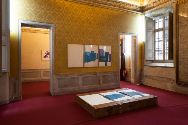 Rossella Carpino - installation view at Palazzo Barolo, Torino 2016 - photo © Ivan Catalano