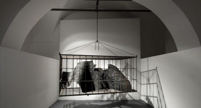 Salvarsi dal naufragio - Antonio Fraddosio - installation view at Museo Carlo Bilotti, Roma 2016