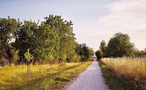 Tobias Rehberger, 24 Stops, Rehberger-Weg