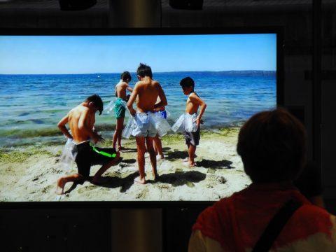 bb9 – Biennale di Berlino 2016 – Halil Altindere, Homeland, 2016 – still da video