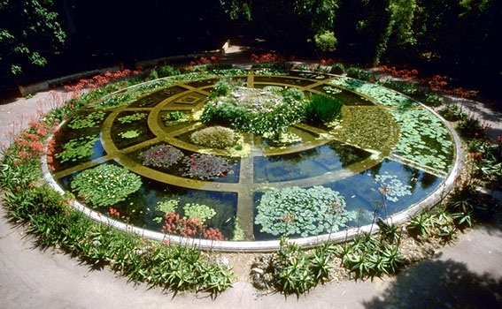 Roma, Orto Botanico