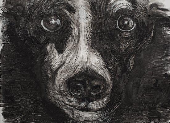 Laurie Anderson, Lolabelle in the Bardo June 5th, 2011, carbone su carta, 315x437 cm