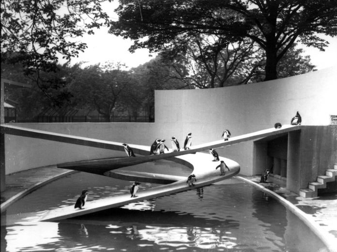 Ove Arup, Penguin Pool, London Zoo, London, 1934 © ZSL