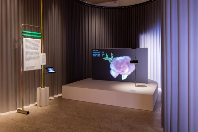 Fear and Love. Reactions to a Complex World – exhibition view at the Design Museum, Londra 2016 – photo © Luke Hayes