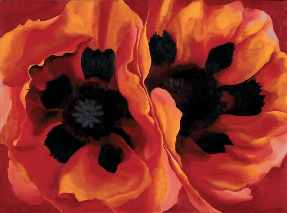 Georgia O'Keeffe, Oriental Poppies, 1927 - The collection of the Frederick R. Weisman Art, Museum at the University of Minnesota, Minneapolis - © 2016 Georgia O'Keeffe Museum-Bildrecht, Wien