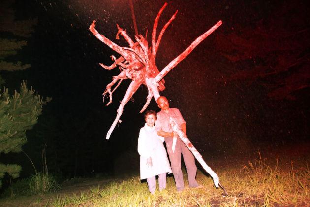 Lieko Shiga, Untitled serie Rasen Kaigan, 2012