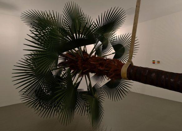Elisabetta Benassi, Letargo. Exhibition view at Magazzino, Roma 2017