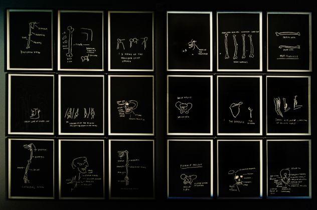 Jean-Michel Basquiat. Exhibition view at MUDEC, Milano 2016. © photo Carlotta Coppo