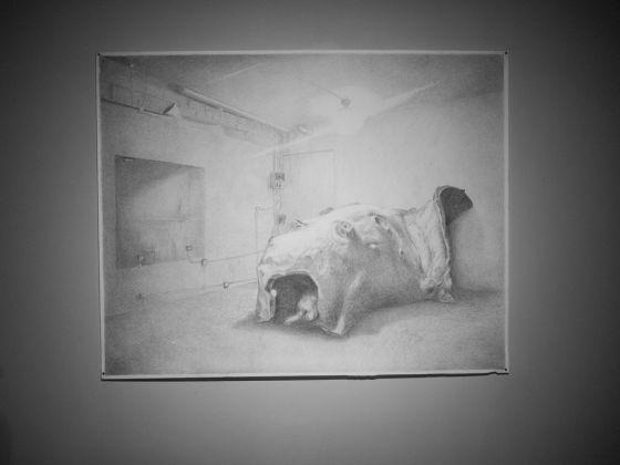 Marco Pace, Non finirò stanziale. Galleria Giovanni Bonelli, Milano 2017