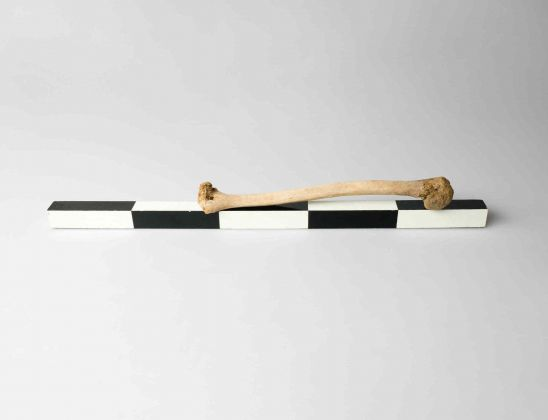 Broomberg & Chanarin, 2000BC, 2016, C-type print, 60x40cm. © Broomberg & Chanarin. Courtesy Lisson Gallery