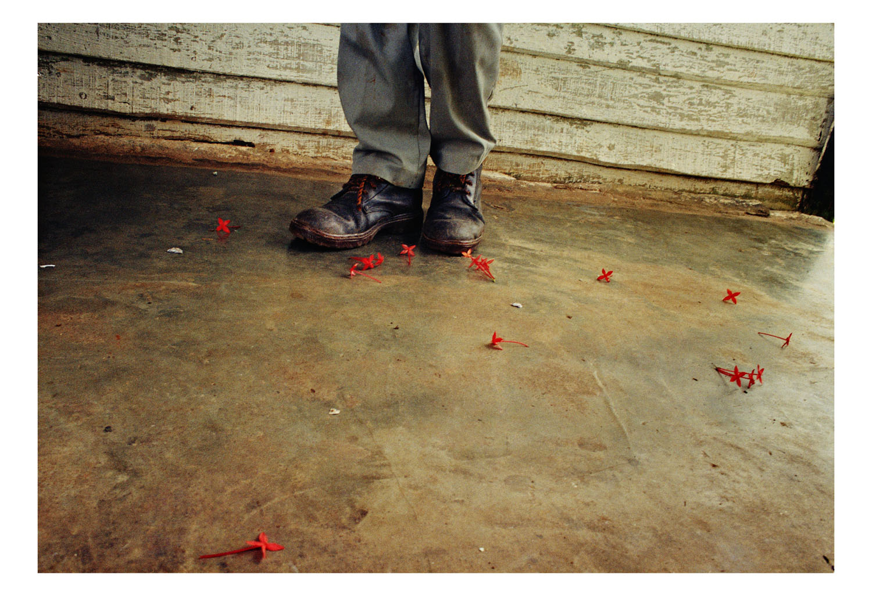 Ernesto Bazan, Boots & Flowers