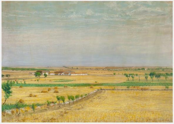 Francesco Romano, Campo di grano, 1920. Acquistato dalla Provincia di Bari nel 1929