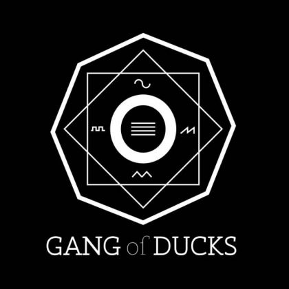 Gang of Ducks