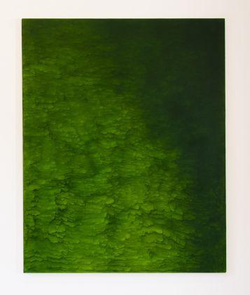 Giuseppe Adamo, Green Area, 2015, acrilico su tela, 100 x 80 cm