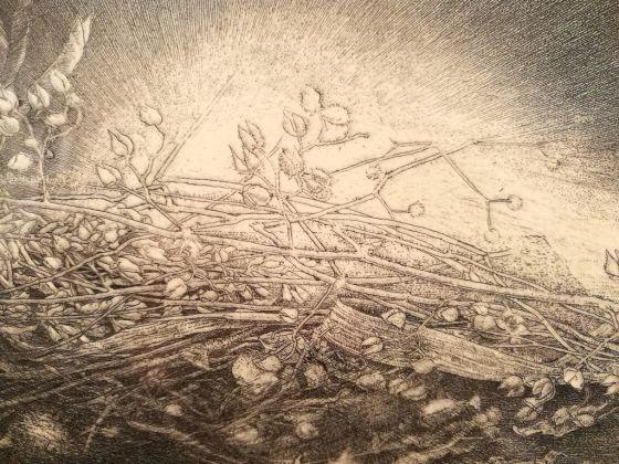Jean-Pierre Velly, L'ombre, la lumière, 1990, acquaforte