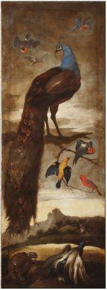 Sinibaldo Scorza, Albero con grande pavone e altri uccelli