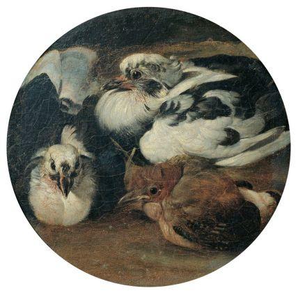 Sinibaldo Scorza, Due piccioni con un tordo