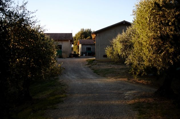 Villa Lena. Studi. Photo Coke Bartrina
