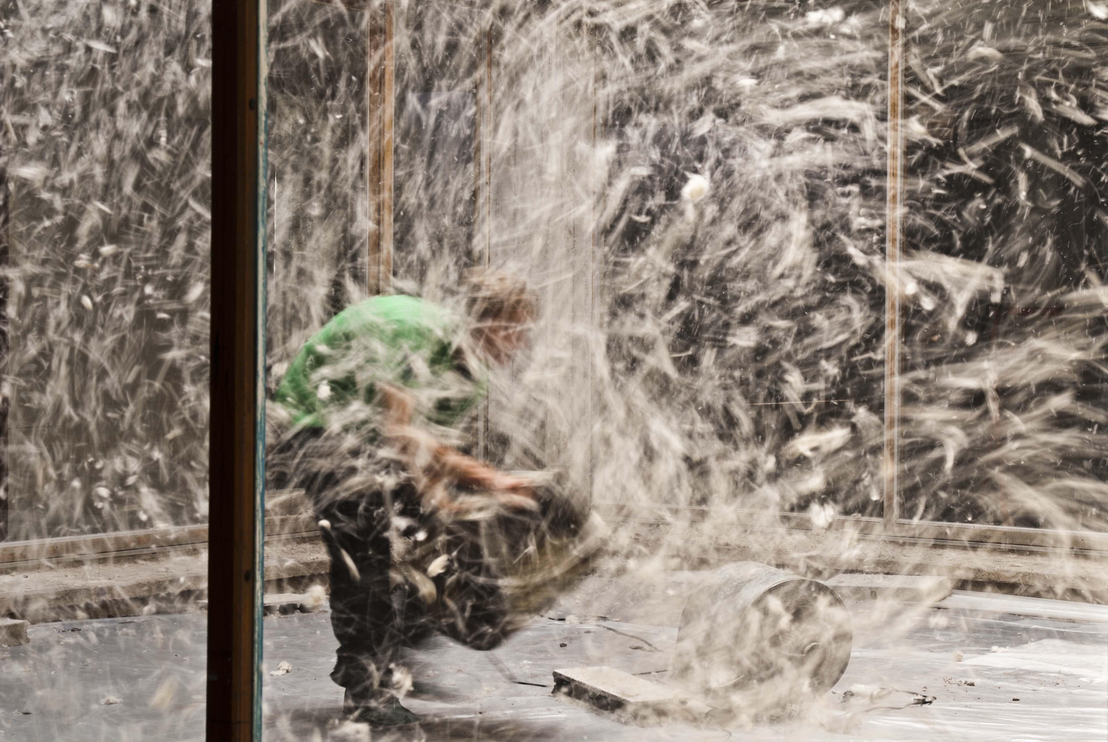 Vivien Roubaud, Pollen de peuplier, soufflerie, centre-trente mètres cubes d'air, deux-cent-vingt volts, 2010, © Vivien Roubaud / Galerie In Situ - Fabienne Leclerc, Paris