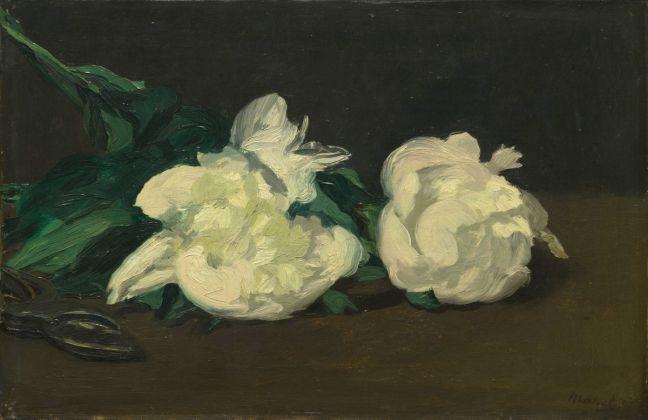 Édouard Manet, Ramo di peonie bianche e cesoie, 1864, olio su tela, 30,5 x 46,5 cm, Parigi, Musée d'Orsay © René-Gabriel Ojéda – RMN-Réunion des Musées Nationaux – distr. Alinari