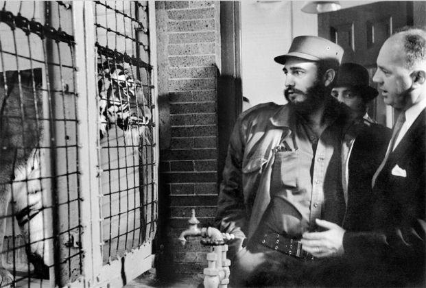 Alberto Korda, Castro allo zoo di New York, 1959