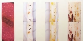 Alicia Frankovich. Frutta e Gambe. Installation view at Le Case d'Arte, Milano 2017