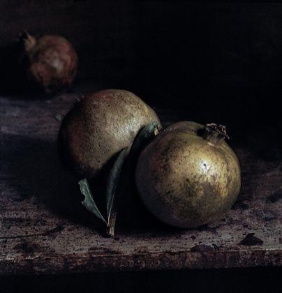 Craigie Horsfield, Two Pomegranates, 2013