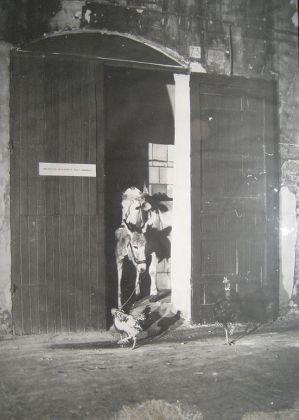 Gino De Dominicis, Ingresso riservato agli animali, 1975 foto Bubi Durini courtesy Lucrezia De Domizio-low