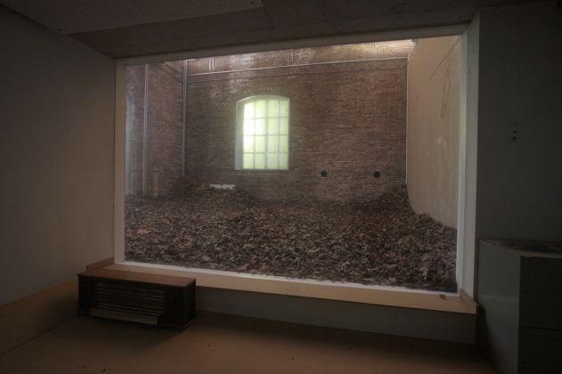 Giorgio Andreotta Calò, November. Dead leaves, still life, still alive, 2009. Installazione site specific, Open Studios, Rijksakademie van Beeldende Kusten, Amsterdam