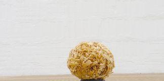 Graziano Folata Romolo / A imperium desire, 2017 sfera in trucioli di legno ricavati dall'eccedenza della lavorazione di un remo, legno, cera d'api ø 18 cm c.ca courtesy l'artista e Galleria Massimodeluca