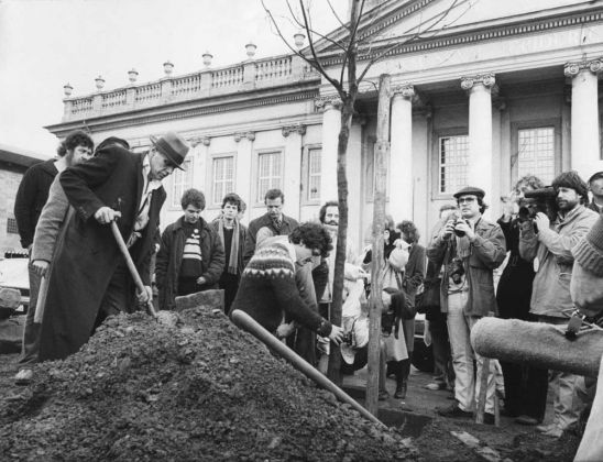 Joseph Beuys, 7000 querce, Documenta VII, Kassel, 1982