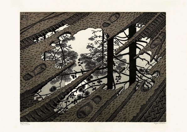 Maurits Cornelis Escher, Pozzanghera