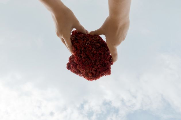 Nuvola Ravera, Pink Elephant, un torrente da una pietra. Una donna sulla collina volge al cielo un corallo rosso, come fosse un parafulmine o un recettore, 2013/2017, stampa digitale su carta fotografica, dimensioni variabili