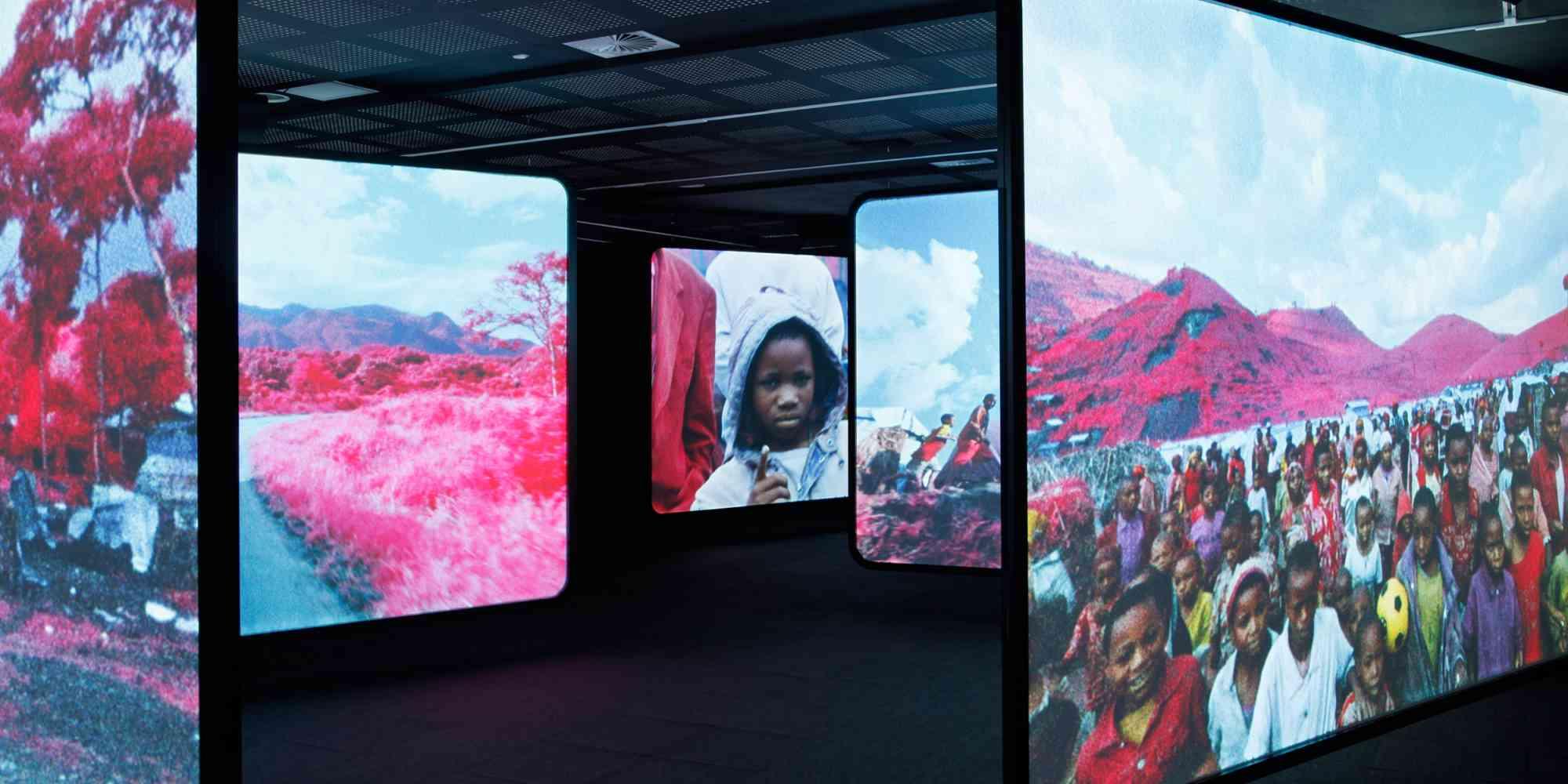 Richard Moss, The Enclave, 2013, installazione video a 6 canali Klm in infrarosso 16mm trasferito su video HD, 39' 25'', courtesy l'artista e Jack Shainman Gallery, New York