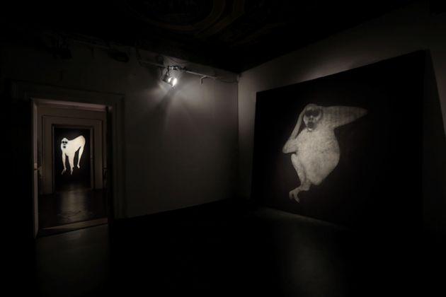Sergio Ragalzi, Parola alle Scimmie, installazione sonora a cura di Elsa Agalbato, Fabio Sargentini, L'Attico, Roma 2017
