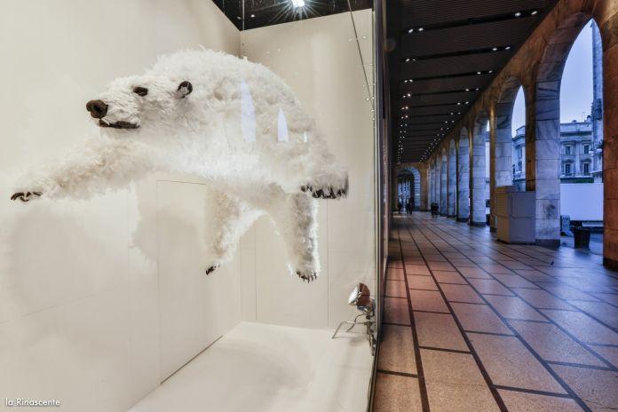Il progetto di Paola Pivi per La Rinascente