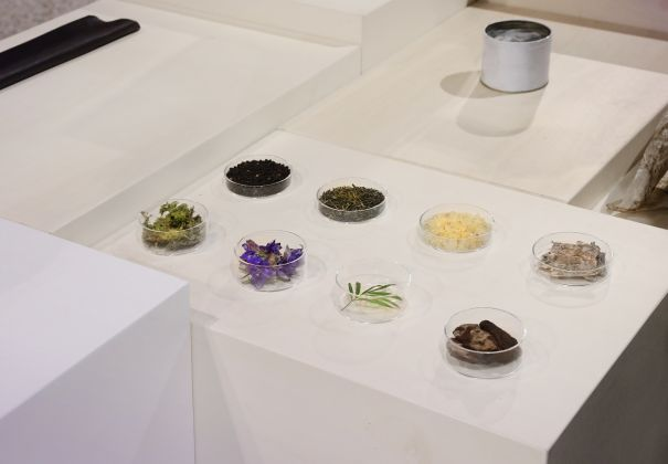 Alcune essenze utilizzate per il profumo Marsèll; la presentazione al Marsèll Paradise Milano