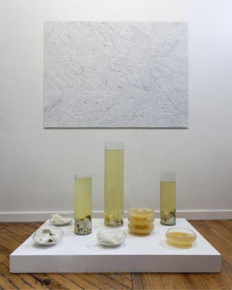 Antonio Fiorentino, Dominium Saturnus (Wall Tea) e Anobiumraggie