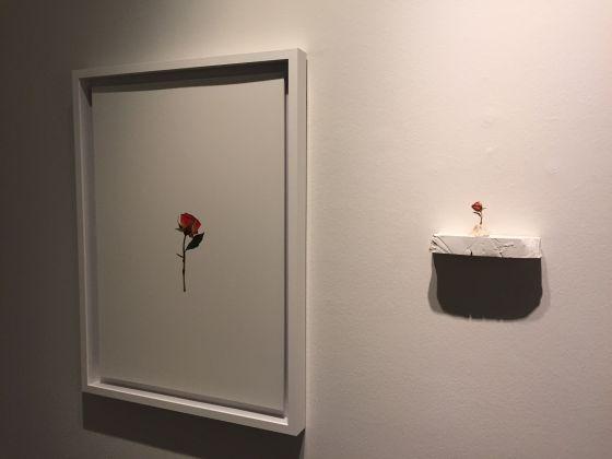 Burçak Bingöl, Mythos and Utopia. Exhibition view at Zilberman Gallery, Istanbul 2017