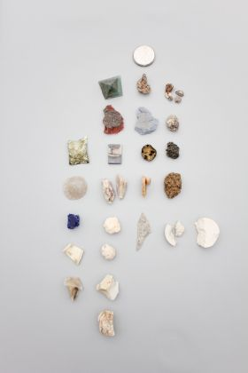 Cabinet of Anthropogenic Specimens © Yesenia Thibault-Picazo