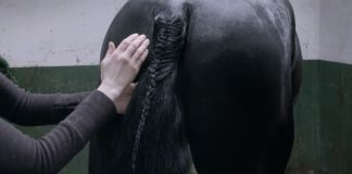 Camille Henrot, Tuesday, 2017. Still da video. Courtesy kamel mennour, Parigi-Londra & König Galerie, Berlino & Metro Pictures, New York