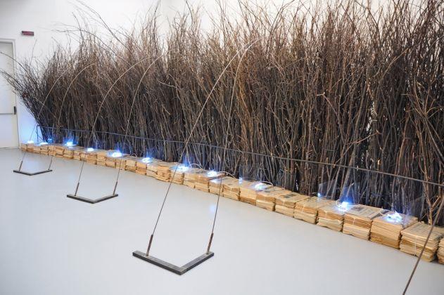 Dalla caverna alla Luna. Installation view at Centro per l'arte contemporanea Luigi Pecci, Prato 2017. Photo Simone Ridi