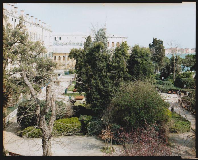 Francesco Neri,Vista dall'alto 1 dei Giardini Reali di Piazza San Marco,Venezia,2016