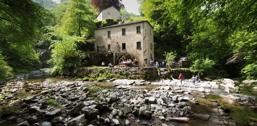 Il Mulino di Bruzella