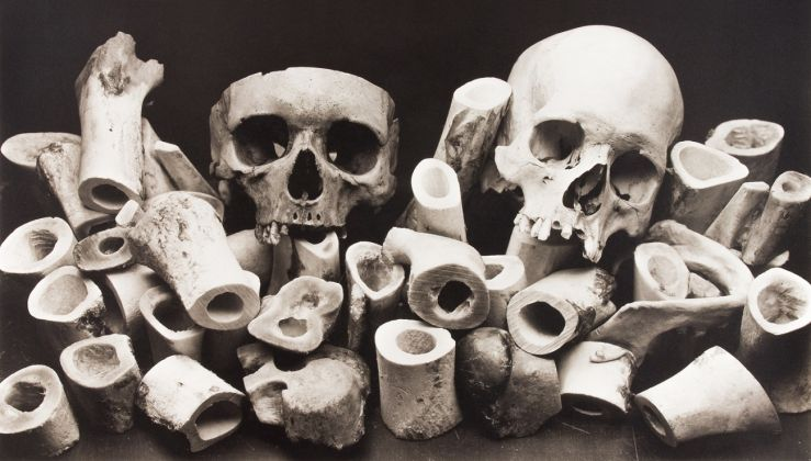 Irving Penn, Bone Forest, New York, 1980 © The Irving Penn Foundation, courtesy Pace and Pace-MacGill Gallery