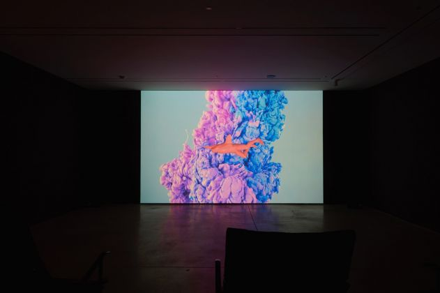 Jihye Yeom, A Night with a Pink Dolphin, 2015. Still da video