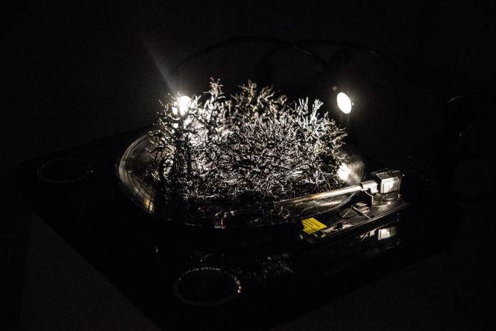Kensuke Koike, To Wolf, Dark is the night, 2017, turntable, vynil, lights, foto Giacomo Cosua