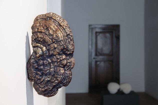 Lupo Borgonovo, Ear, 2015. Courtesy Lupo Borgonovo & Monica De Cardenas Gallery