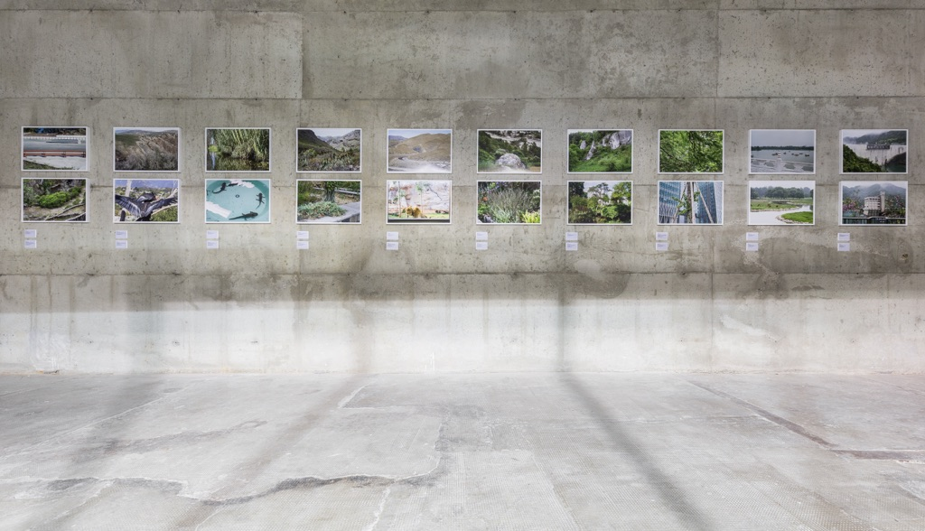 Michael Wang. Extinct in the Wild. Fondazione Prada, Milano 2017