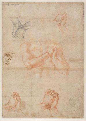Michelangelo Buonarroti, Studio di mani (verso), circa 1510-11, 27,2 x 19,2 cm. Albertina, Vienna. Courtesy National Gallery